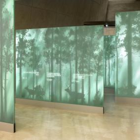 Galeria Las wystawy