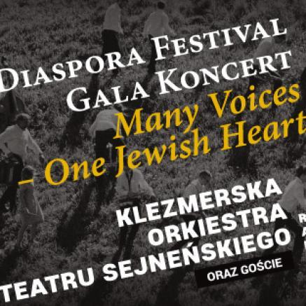 Diaspora Festival Gala Koncert -