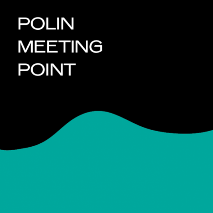 POLIN Meeting Point 2017