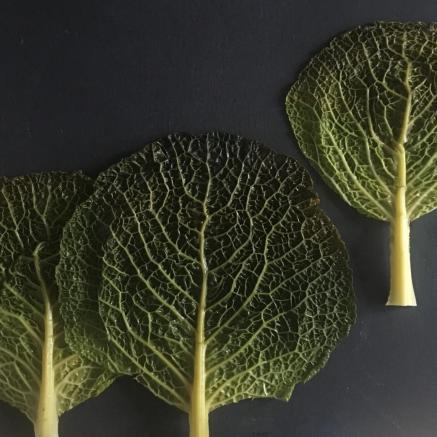 Spacer kulinarny z Sabiną Francuz w ramach TISZ Festiwalu w Muzeum POLIN. Na zdjęciu kompozycja z trzech liści kapusty włoskiej, ułożonych na grafitowym blacie. Wyglądają jak wiosenne drzewa.