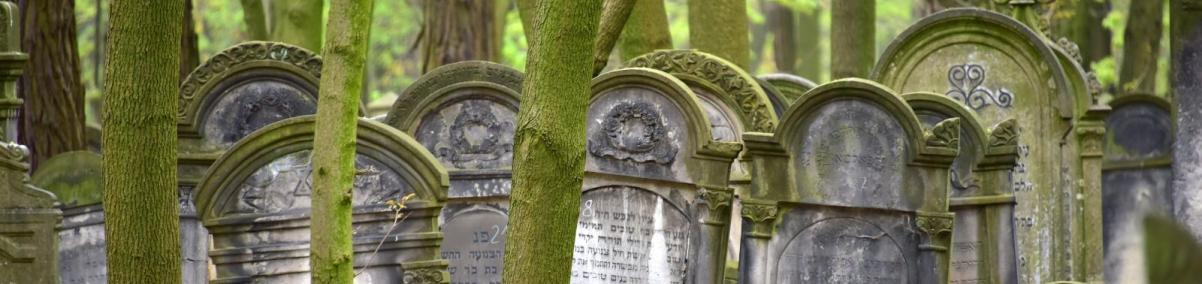 Wielkomiejskie cmentarze żydowskie w Europie Środkowo-Wschodniej - wykład specjalny, Muzeum POLIN