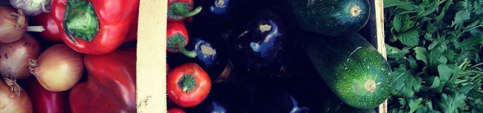 warsztaty kulinarne, Fania Lewando
